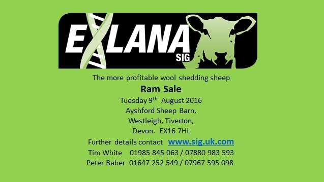 Exlana Ram Sale pg 1